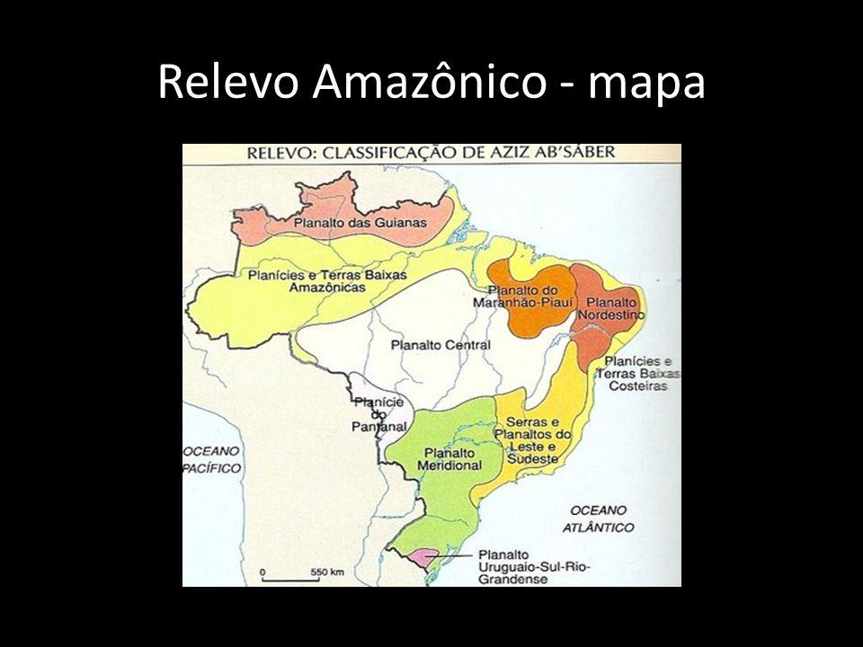 Solo Amazônico • Solo pobre em minerais • restrita camada de matéria-orgânica que se encontra na superfície • Húmus - fina camada fértil é oriunda da própria floresta, nela os organismos (insetos, fungos, algas e bactérias) vivos reciclam os nutrientes dispostos no ambiente.