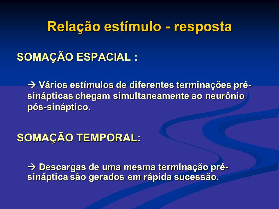 Relação estímulo - resposta SOMAÇÃO ESPACIAL :  Vários estímulos de diferentes terminações pré- sinápticas chegam simultaneamente ao neurônio pós-sin