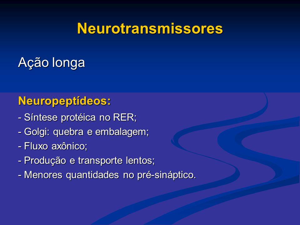 Neurotransmissores Ação longa Neuropeptídeos: - Síntese protéica no RER; - Golgi: quebra e embalagem; - Fluxo axônico; - Produção e transporte lentos;