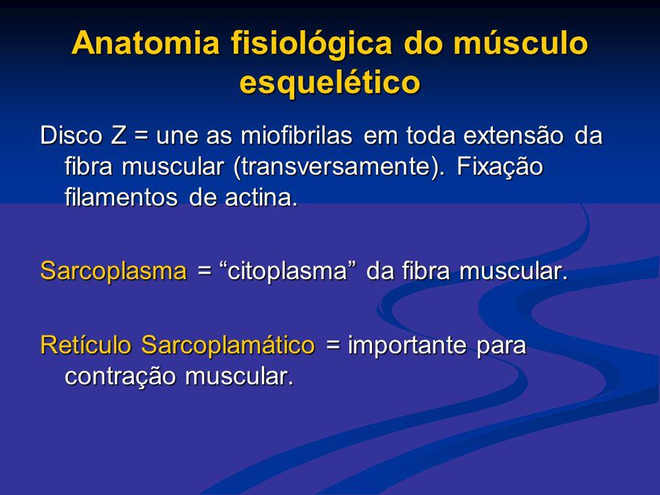 Anatomia fisiológica do músculo esquelético Disco Z = une as miofibrilas em toda extensão da fibra muscular (transversamente). Fixação filamentos de a