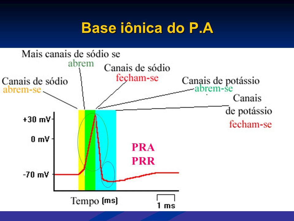 Base iônica do P.A PRA PRR