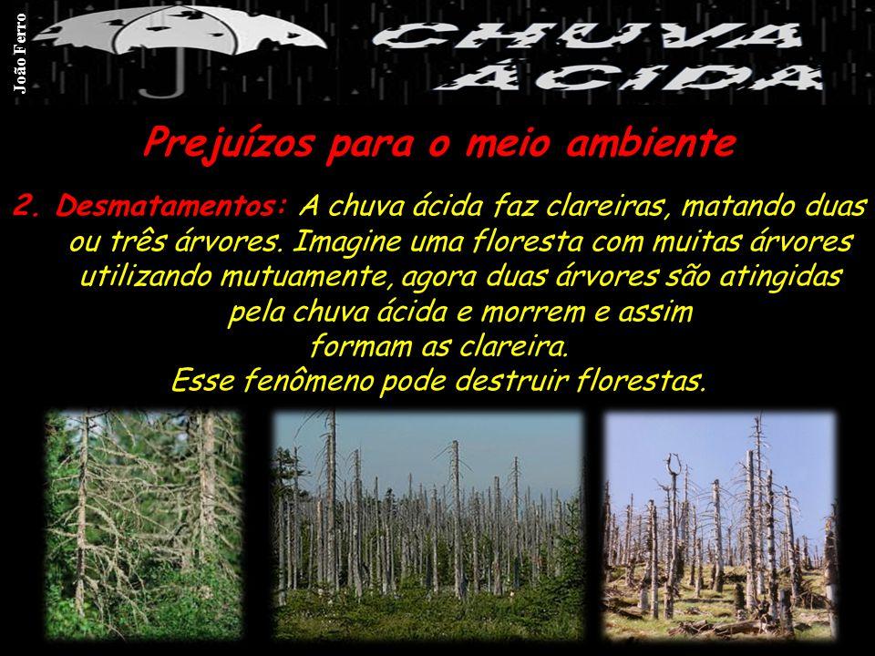 Prejuízos para o meio ambiente 2.