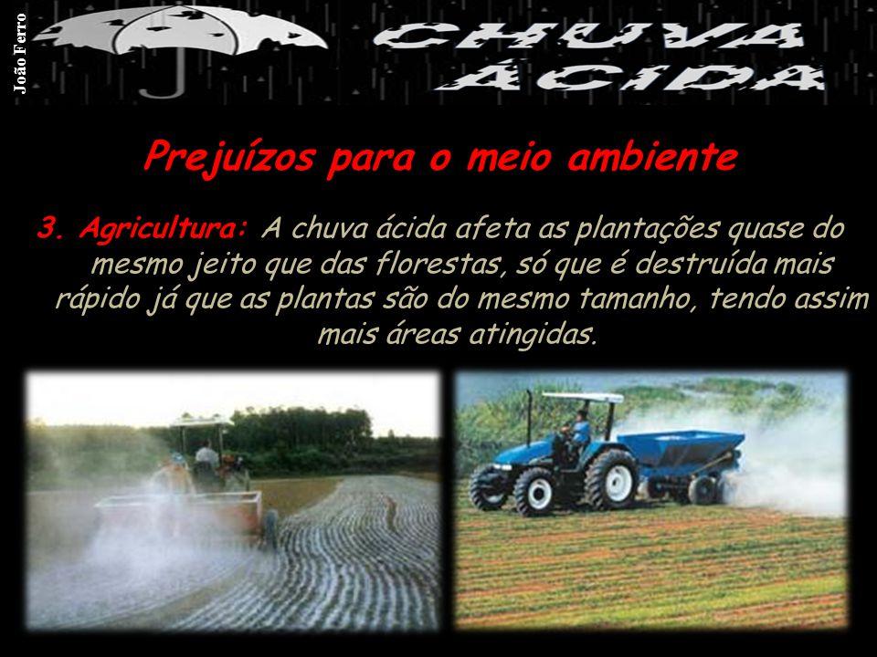 3. Agricultura: A chuva ácida afeta as plantações quase do mesmo jeito que das florestas, só que é destruída mais rápido já que as plantas são do mesm