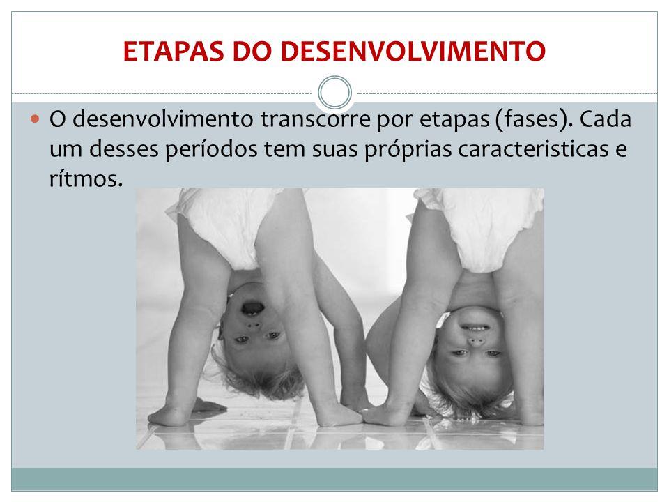 ETAPAS DO DESENVOLVIMENTO  O desenvolvimento transcorre por etapas (fases). Cada um desses períodos tem suas próprias caracteristicas e rítmos.