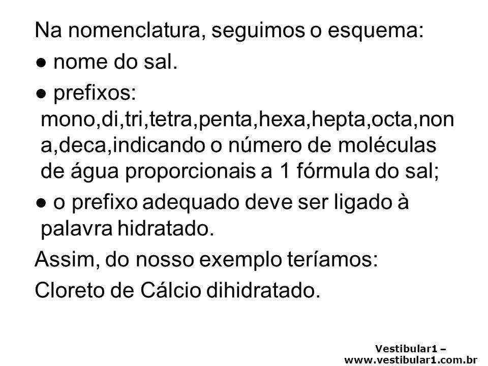 Vestibular1 – www.vestibular1.com.br Na nomenclatura, seguimos o esquema: ● nome do sal. ● prefixos: mono,di,tri,tetra,penta,hexa,hepta,octa,non a,dec