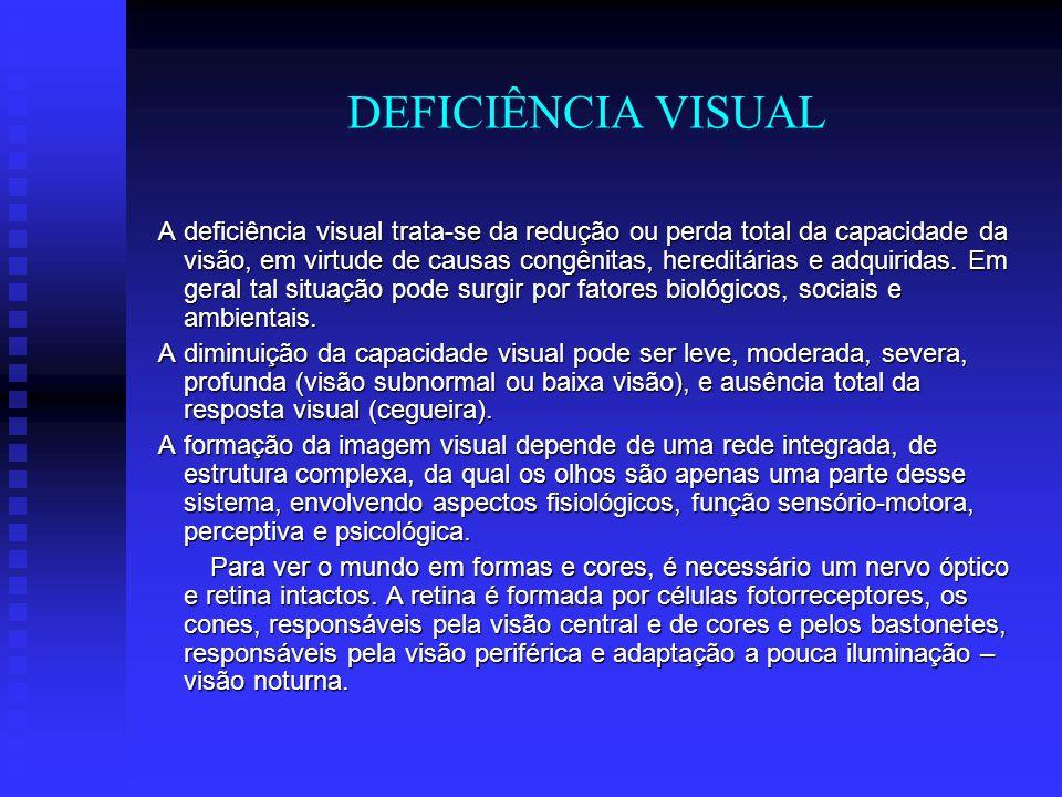 DEFICIÊNCIA VISUAL A deficiência visual trata-se da redução ou perda total da capacidade da visão, em virtude de causas congênitas, hereditárias e adq