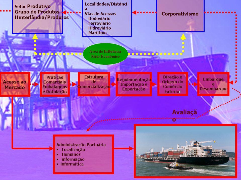 Administração Portuária • Localização • Humanos • informação • informática Acesso ao Mercado Práticas Comerciais Embalagens e Rotulação Estrutura de C