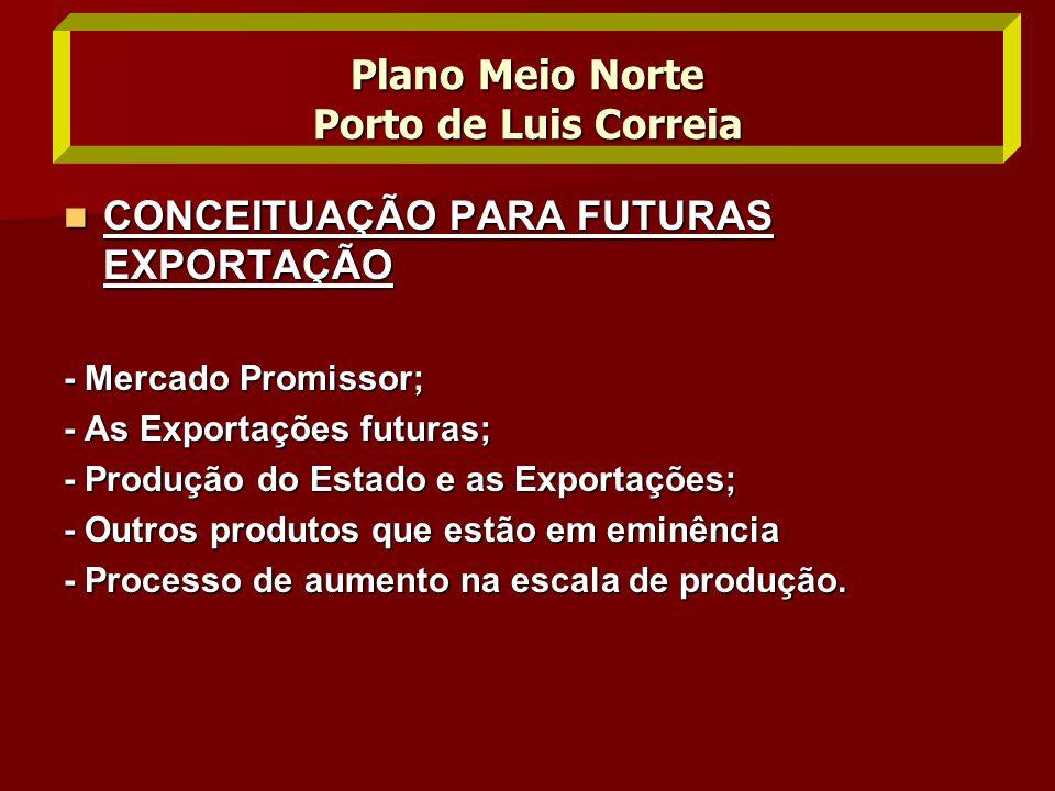  CONCEITUAÇÃO PARA FUTURAS EXPORTAÇÃO - Mercado Promissor; - As Exportações futuras; - Produção do Estado e as Exportações; - Outros produtos que est