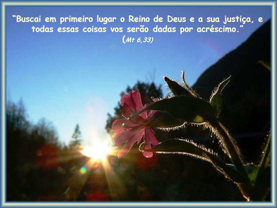 Buscai em primeiro lugar o Reino de Deus e a sua justiça, e todas essas coisas vos serão dadas por acréscimo. ( Mt 6,33)