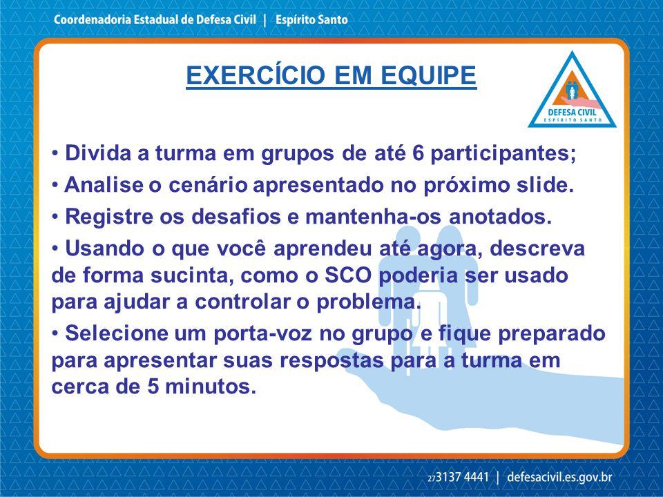 EXERCÍCIO EM EQUIPE • Divida a turma em grupos de até 6 participantes; • Analise o cenário apresentado no próximo slide.