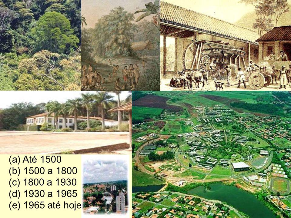 (b) 1500 a 1800 (c) 1800 a 1930 (e) 1965 até hoje (d) 1930 a 1965 Barão Geraldo (a) Até 1500