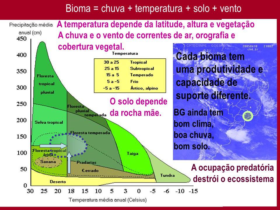 Bioma = chuva + temperatura + solo + vento A temperatura depende da latitude, altura e vegetação A chuva e o vento de correntes de ar, orografia e cobertura vegetal.