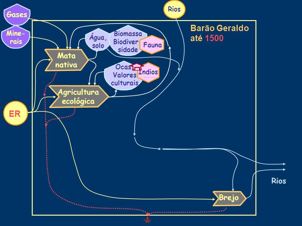 Barão Geraldo até 1500 Água, solo Mine- rais Ocas, Valores culturais Biomassa Biodiver- sidade Índios Fauna Gases Agricultura ecológica Mata nativa Rios Brejo ER