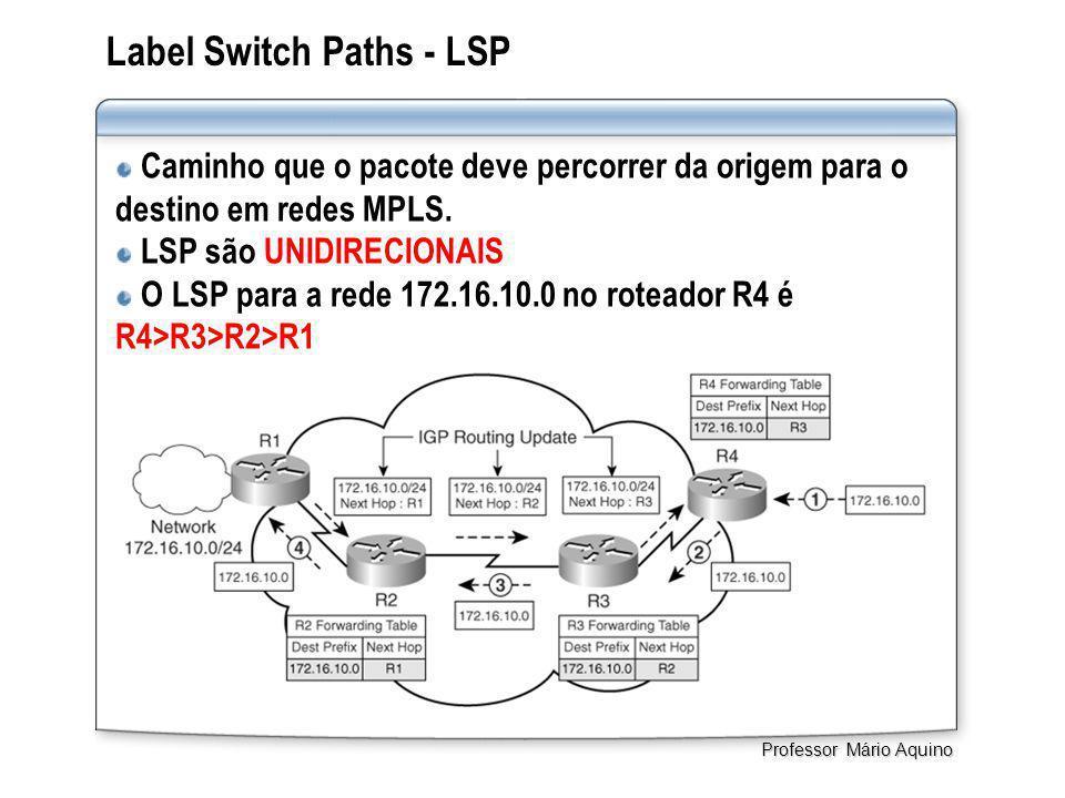 Label Switch Paths - LSP Caminho que o pacote deve percorrer da origem para o destino em redes MPLS. LSP são UNIDIRECIONAIS O LSP para a rede 172.16.1