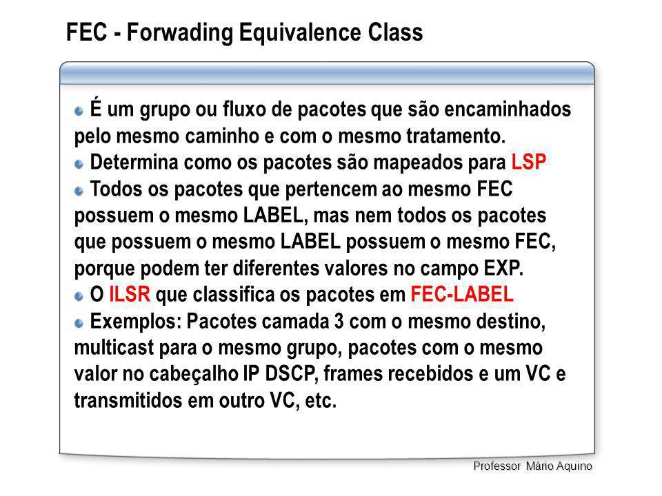 FEC - Forwading Equivalence Class É um grupo ou fluxo de pacotes que são encaminhados pelo mesmo caminho e com o mesmo tratamento. Determina como os p