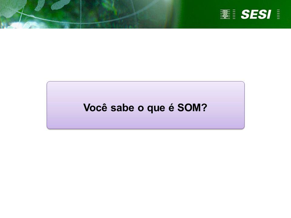 Você sabe o que é SOM?