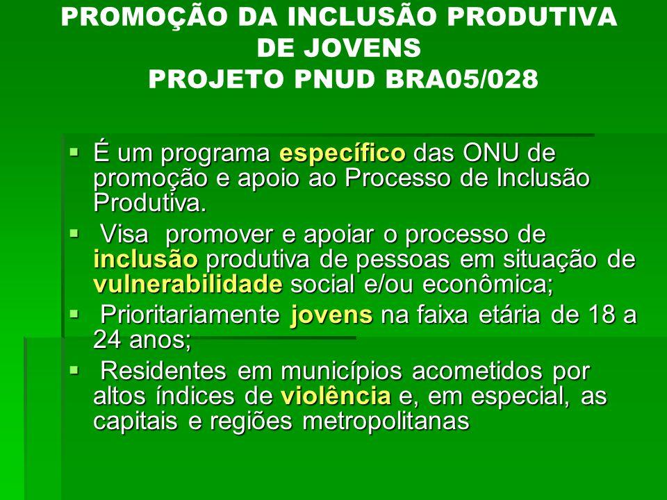 PROMOÇÃO DA INCLUSÃO PRODUTIVA DE JOVENS PROJETO PNUD BRA05/028  É um programa específico das ONU de promoção e apoio ao Processo de Inclusão Produti