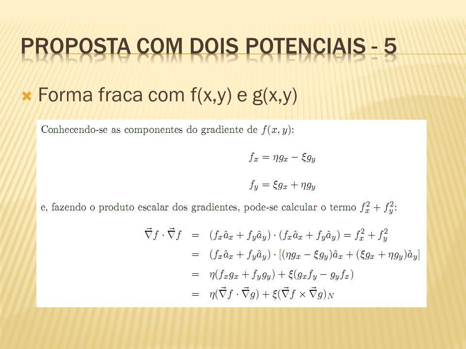  Forma fraca com f(x,y) e g(x,y)