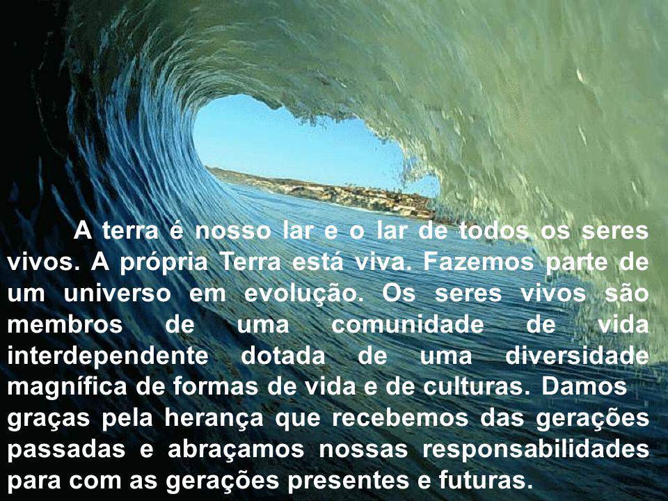 Agenda 21 •A Agenda 21 Brasileira tem como opção a criação de Agendas 21 Locais.