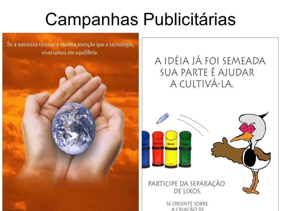 Agenda 21 •A Agenda 21 Brasileira tem como opção a criação de Agendas 21 Locais. A proposta é que cada cidade faça sua Agenda 21 Local com a participa