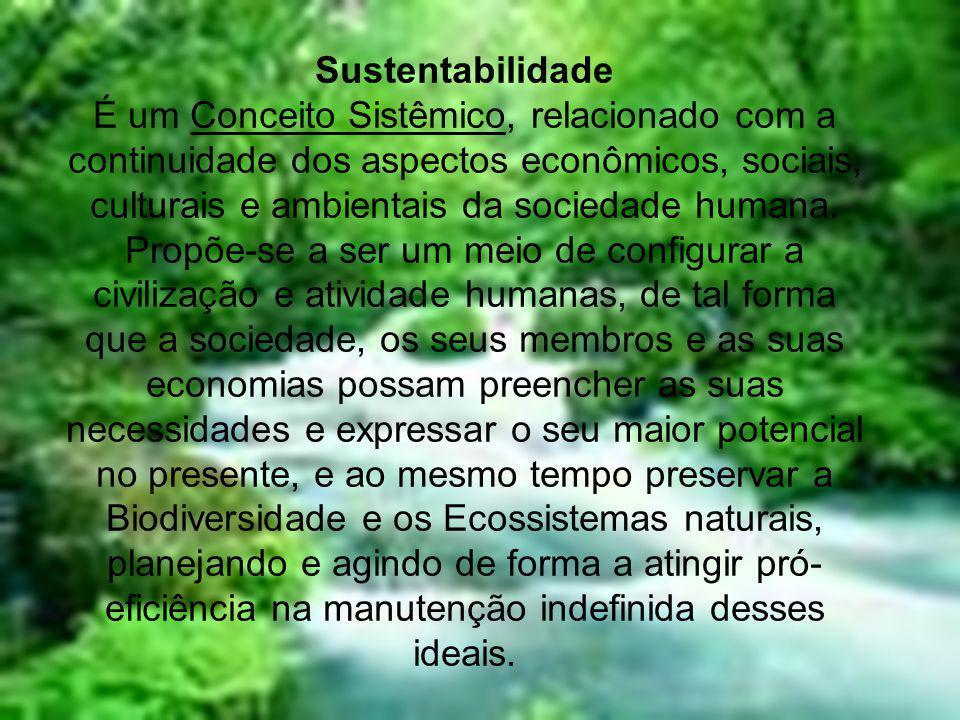 Questão do Saneamento •É responsab ilidade de todos ter clareza sobre o destino de seu esgoto