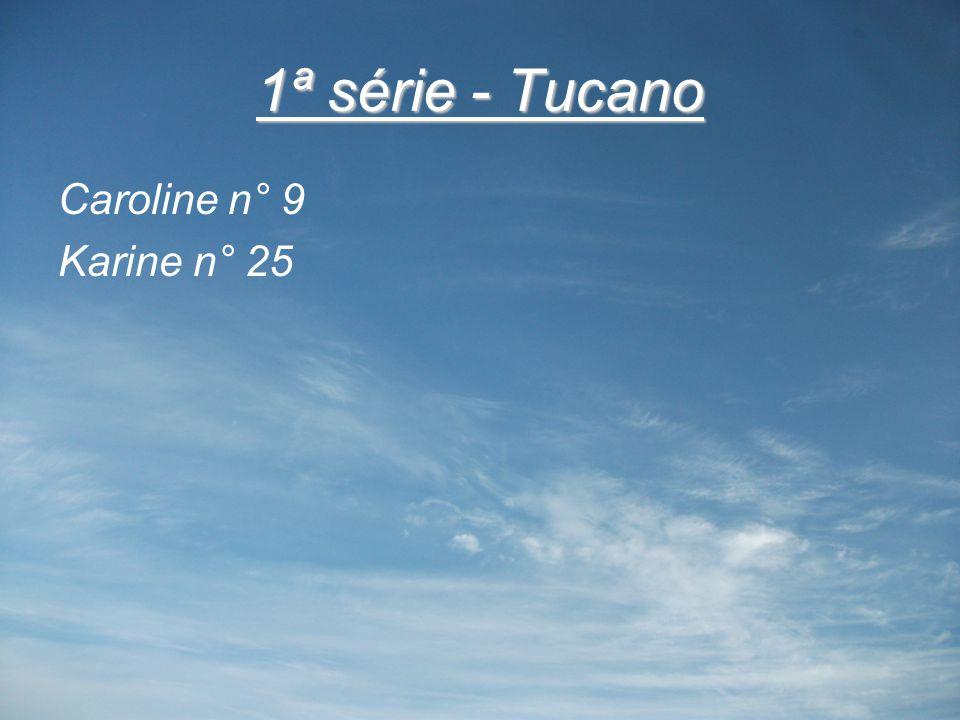 1ª série - Tucano Caroline n° 9 Karine n° 25