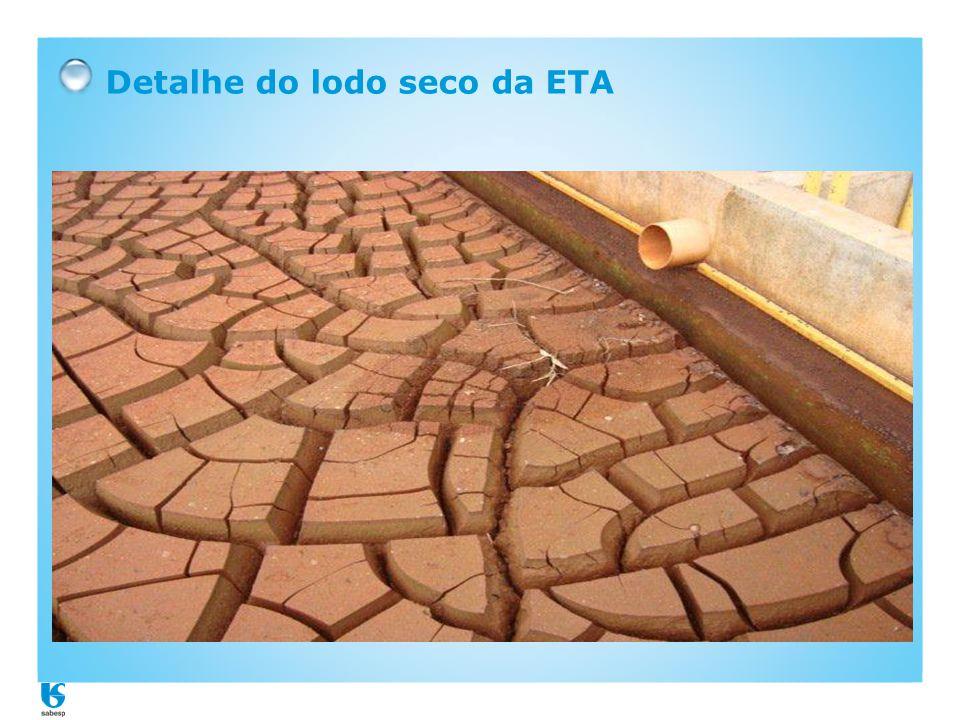 Detalhe do lodo seco da ETA