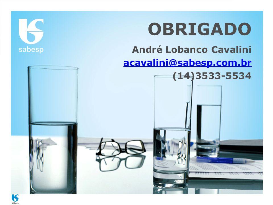 OBRIGADO André Lobanco Cavalini acavalini@sabesp.com.br (14)3533-5534
