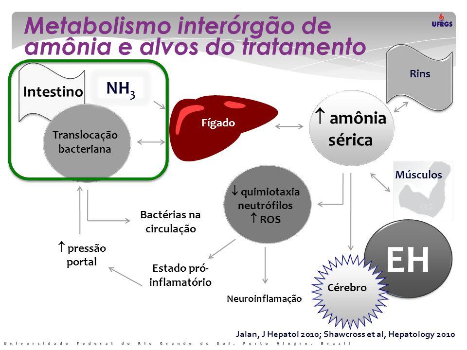 EH Metabolismo interórgão de amônia e alvos do tratamento Translocação bacteriana Bactérias na circulação  quimiotaxia neutrófilos  ROS Estado pró-