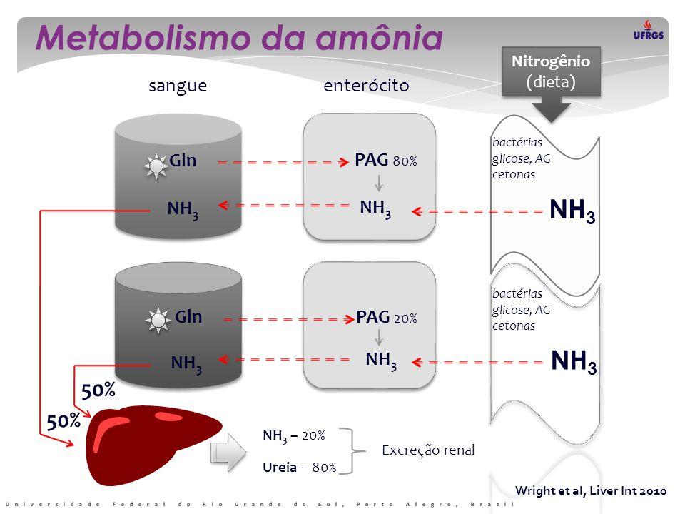 Wright et al, Liver Int 2010 Metabolismo intra-hepático da amônia Y Y Hepatócitos periportais Hepatócitos perivenulares Veia portaVeia hepática NH 3 Ciclo da ureia Ureia PAG GS Krebs Gln PAG  Gln= Glu + NH 3 GS  Glu + NH 3 = Gln