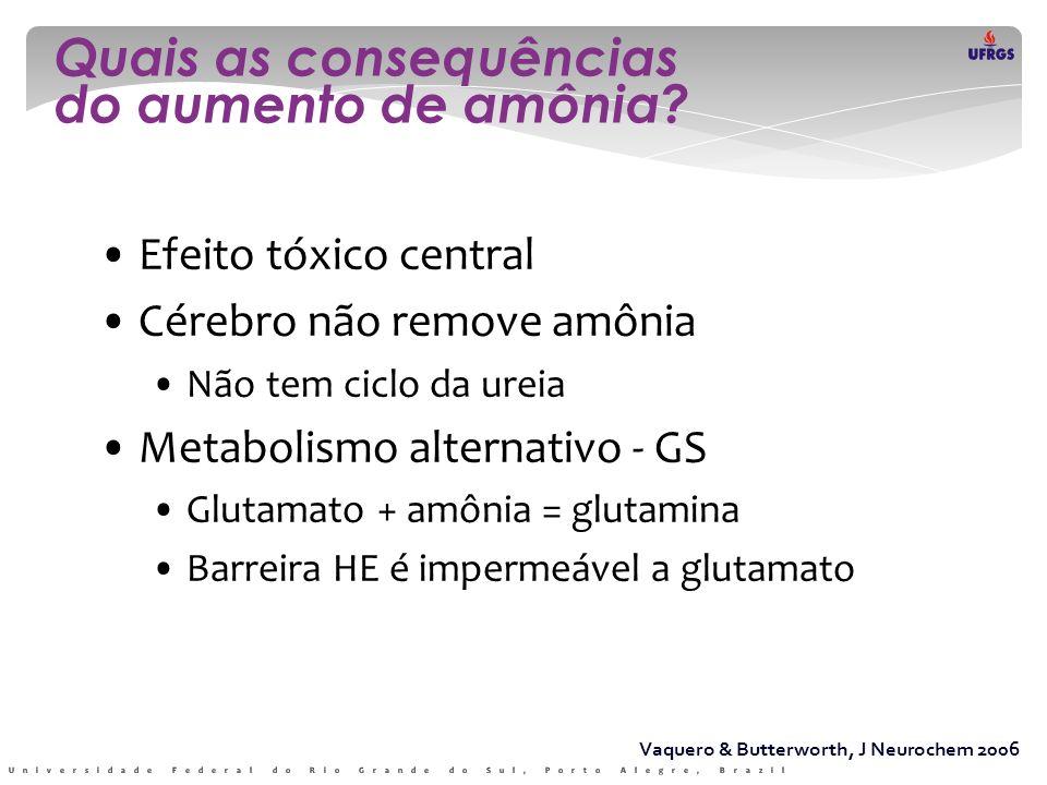 Vaquero & Butterworth, J Neurochem 2006 • Efeito tóxico central • Cérebro não remove amônia • Não tem ciclo da ureia • Metabolismo alternativo - GS •