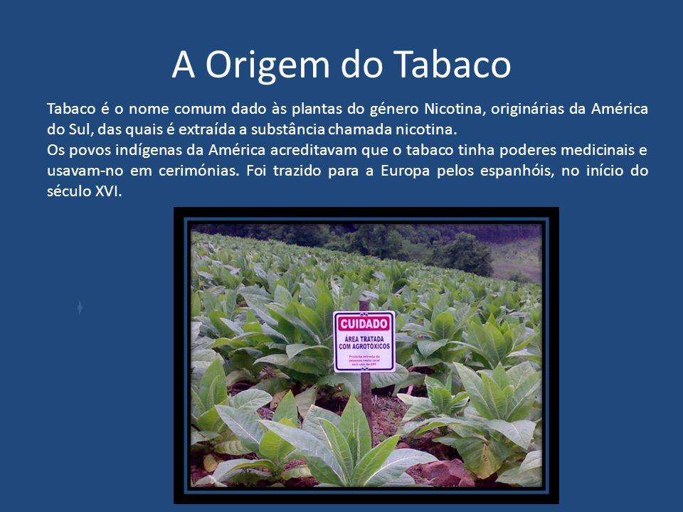 Os Perigos do Tabaco Escola EB 2/3 c/ JI Cidade de Castelo Branco Área de Projecto 2010/2011