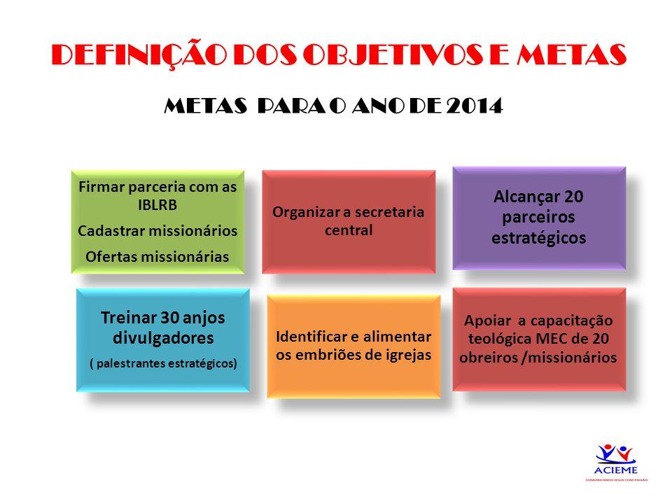 DEFINIÇÃO DOS OBJETIVOS E METAS 11 METAS PARA O ANO DE 2014