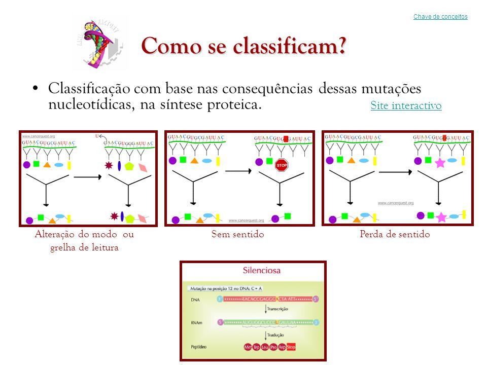 Como se classificam? •Classificação com base nas consequências dessas mutações nucleotídicas, na síntese proteica. Site interactivo Site interactivo C