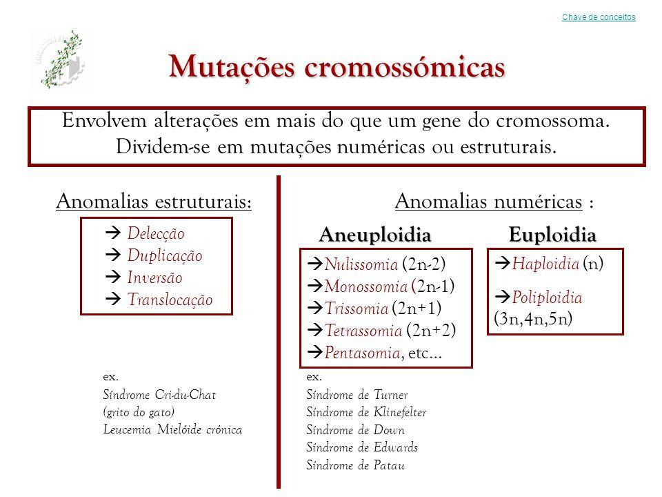Mutações cromossómicas Envolvem alterações em mais do que um gene do cromossoma. Dividem-se em mutações numéricas ou estruturais. Chave de conceitos A