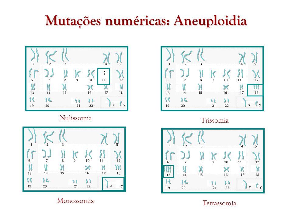 Mutações numéricas: Aneuploidia Nulissomia Trissomia Monossomia Tetrassomia