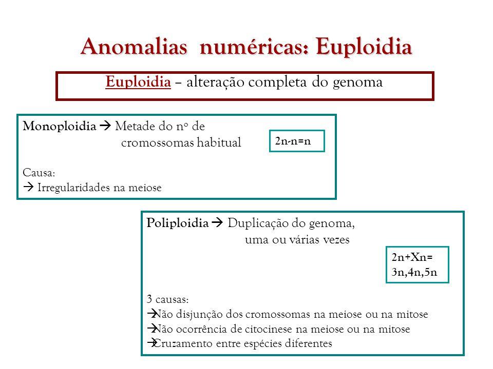 Anomalias numéricas: Euploidia Euploidia – alteração completa do genoma Poliploidia  Duplicação do genoma, uma ou várias vezes 3 causas:  Não disjun