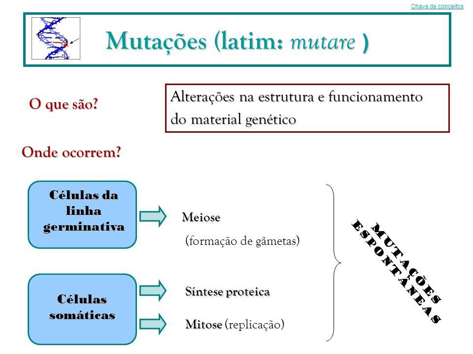 Mutações (latim: mutare ) O que são? Onde ocorrem? Alterações na estrutura e funcionamento do material genético Células somáticas Células da linha ger