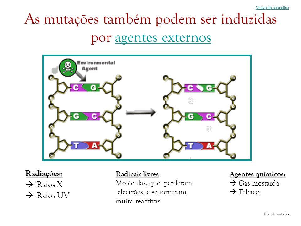 As mutações também podem ser induzidas por agentes externosagentes externosRadiações:  Raios X  Raios UV Chave de conceitos Radicais livres Molécula