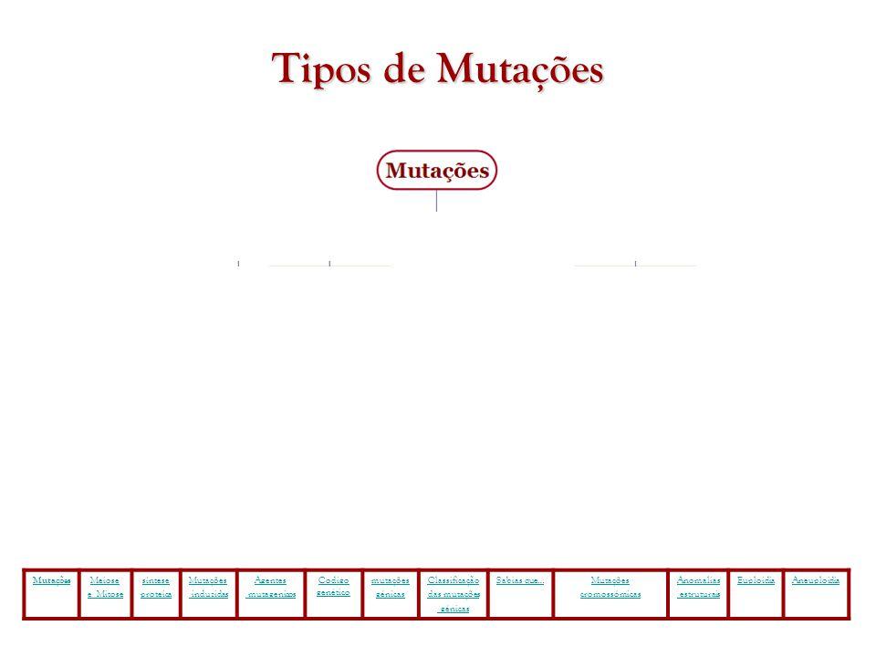 Tipos de Mutações Mutações Meiose e Mitose síntese proteica Mutações induzidas Agentes mutagenicos Codigo genético mutações génicas Classificação das