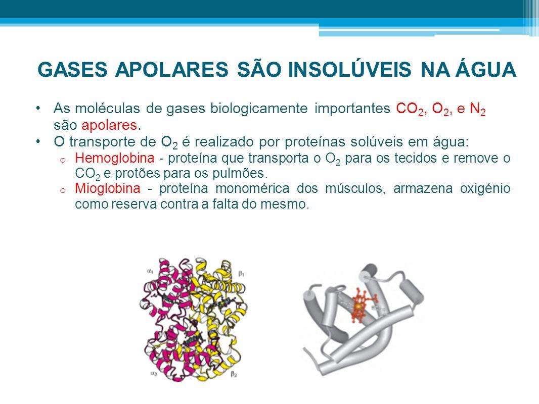 GASES APOLARES SÃO INSOLÚVEIS NA ÁGUA •As moléculas de gases biologicamente importantes CO 2, O 2, e N 2 são apolares. •O transporte de O 2 é realizad