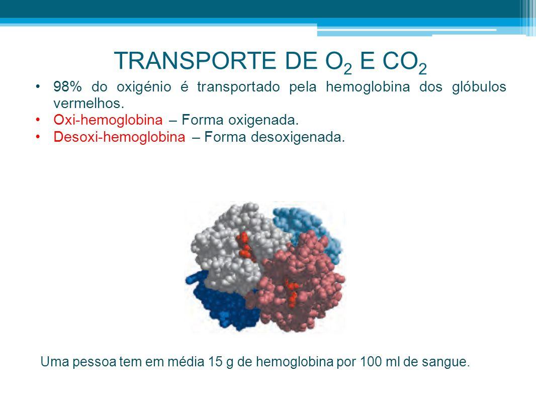 TRANSPORTE DE O 2 E CO 2 •98% do oxigénio é transportado pela hemoglobina dos glóbulos vermelhos. •Oxi-hemoglobina – Forma oxigenada. •Desoxi-hemoglob