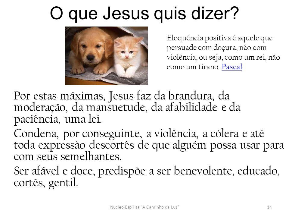 O que Jesus quis dizer? Por estas máximas, Jesus faz da brandura, da moderação, da mansuetude, da afabilidade e da paciência, uma lei. Condena, por co