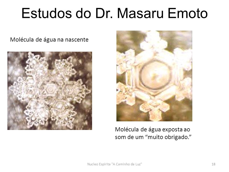 Estudos do Dr. Masaru Emoto Nucleo Espirita