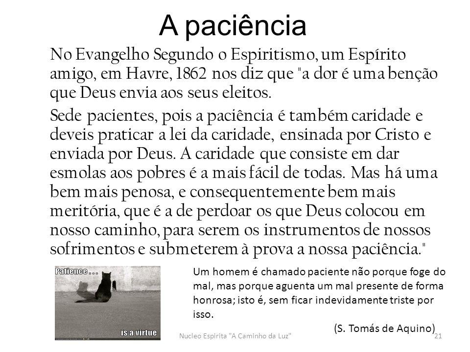 A paciência No Evangelho Segundo o Espiritismo, um Espírito amigo, em Havre, 1862 nos diz que