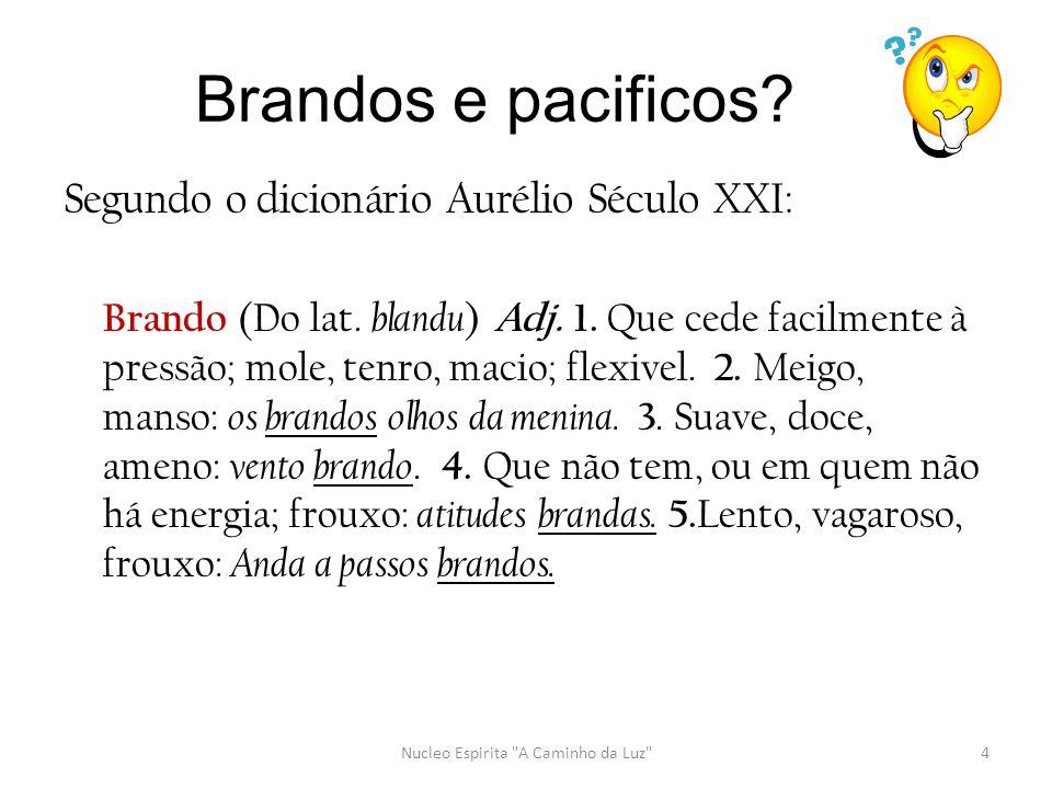 Segundo o dicionário Aurélio Século XXI: Brando (Do lat. blandu ) Adj. 1. Que cede facilmente à pressão; mole, tenro, macio; flexivel. 2. Meigo, manso