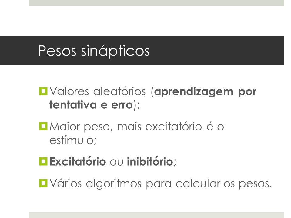 Pesos sinápticos  Valores aleatórios ( aprendizagem por tentativa e erro );  Maior peso, mais excitatório é o estímulo;  Excitatório ou inibitório