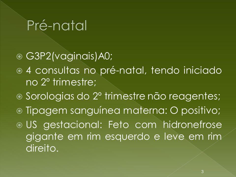  G3P2(vaginais)A0;  4 consultas no pré-natal, tendo iniciado no 2º trimestre;  Sorologias do 2º trimestre não reagentes;  Tipagem sanguínea matern