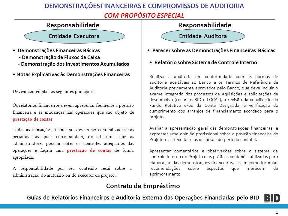 4 COM PROPÓSITO ESPECIAL • Demonstrações Financeiras Básicas - Demonstração de Fluxos de Caixa - Demonstração dos Investimentos Acumulados Responsabil