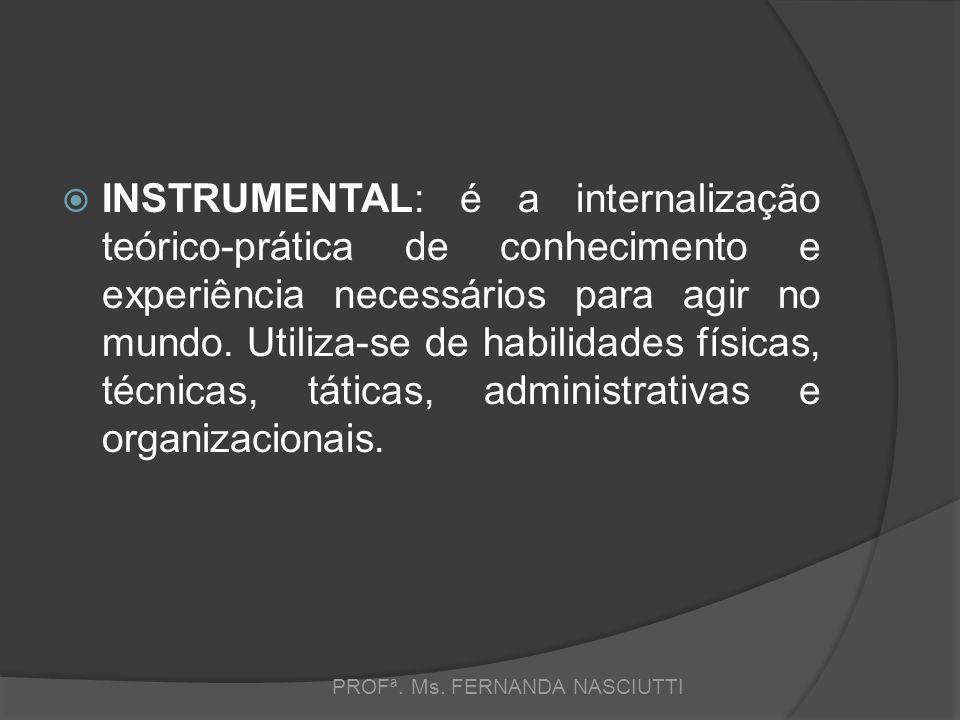  INSTRUMENTAL: é a internalização teórico-prática de conhecimento e experiência necessários para agir no mundo.